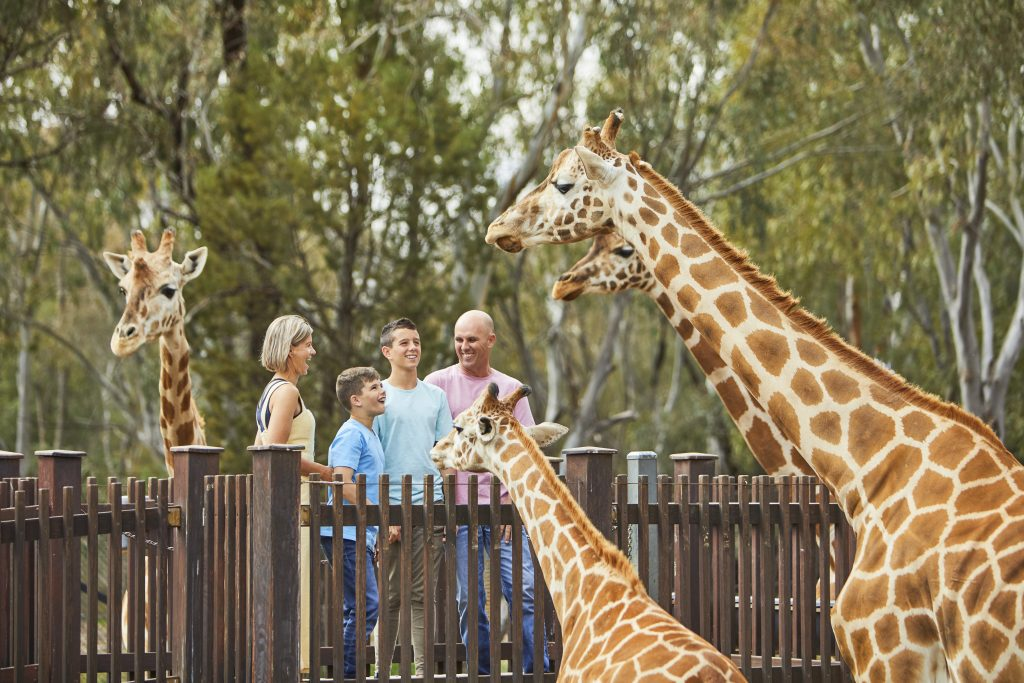 Easter Holiday Adventure - Western Plains Zoo